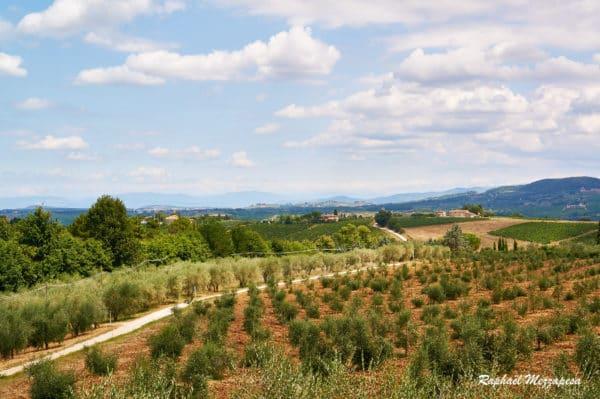 Paysage de Toscane, Italie, à la focale standard photo de Raphaël Mezzapesa